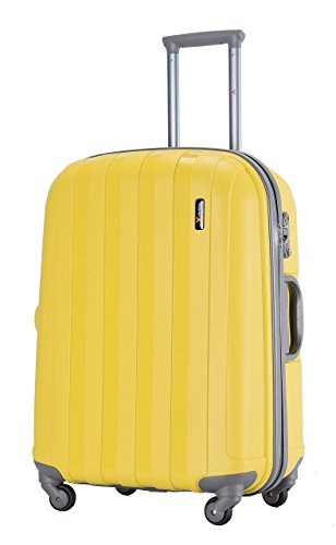 luggageX500_.jpg